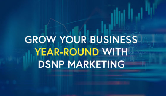 Grow your business year-round with DSNP marketing