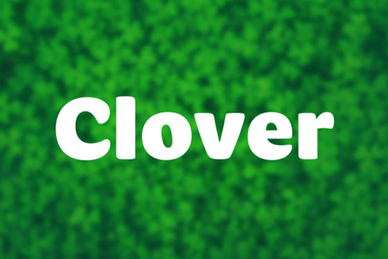 clover 2021 mapd